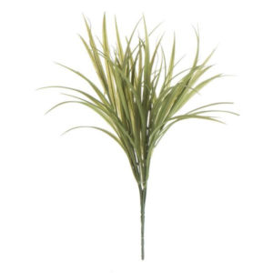 Busk bamboo